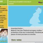 Fazenda produtora de bebês vendia crianças pela Internet