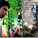 Garoto de 13 anos revoluciona tecnologia solar observando as árvores
