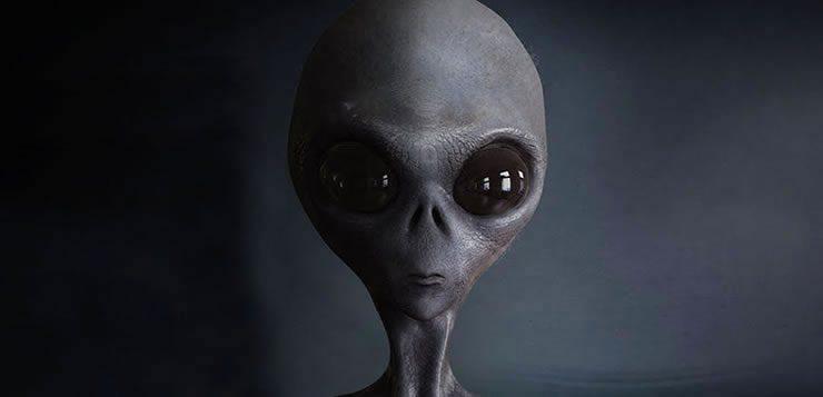 Existem duas raças alienígenas de Greys: os líderes e os trabalhadores