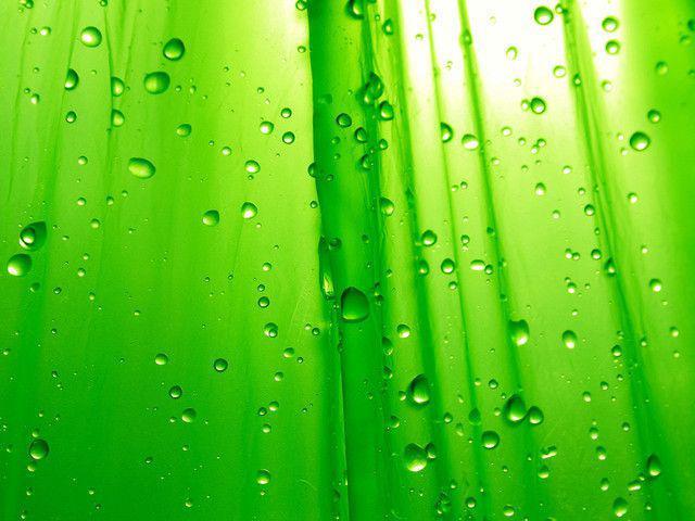 Green Simplicity - papel de parede para pc