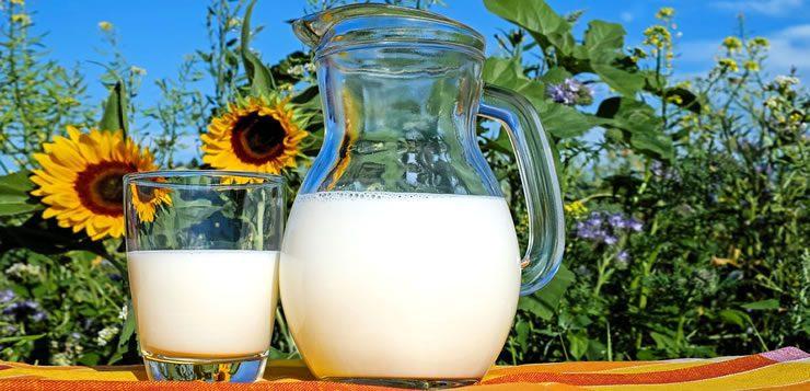 O leite e seus derivados estão entre os alimentos mais consumidos no mundo