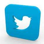 Por que o Twitter é representado por um pássaro?